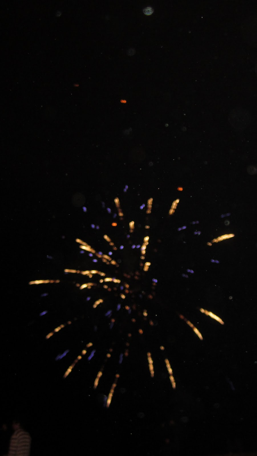 Bring on 2011! Happy New Year!