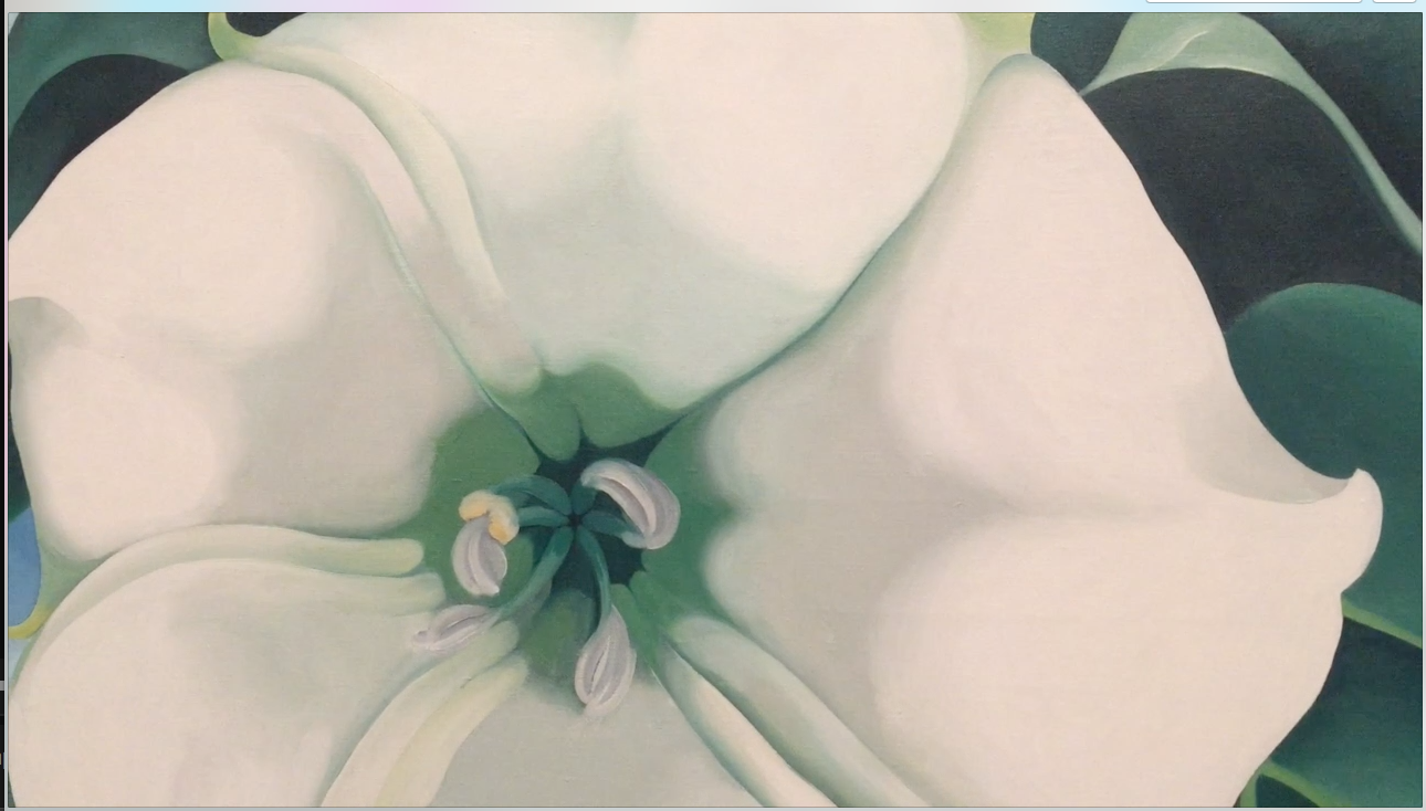 Illustrated Exhibition and Video review of Georgia O'Keeffe Exhibition at Tate Modern